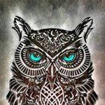 Hoodini YT Profile Picture