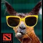 llama dota Profile Picture