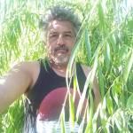 roberto astrada Profile Picture