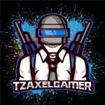 TZAXELGAMERYT Profile Picture