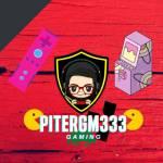 PITERGM333 Profile Picture