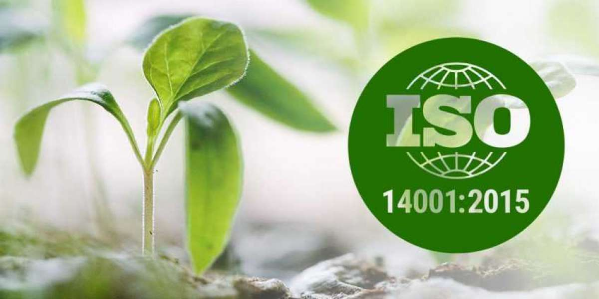 Instructions to Allocate Roles and Responsibilities According to ISO 14001
