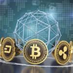 Bitcoin Era App Profile Picture